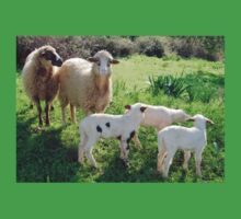 Two Ewes and Three Lambs Grazing Kids Tee