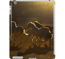 Light play in the Country of Beautiful Horses iPad Case/Skin
