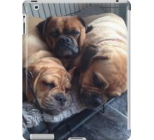 cute cuddly puggles iPad Case/Skin