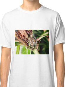 Spider on a Plant Classic T-Shirt