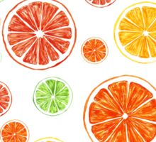Bright citrus pattern Sticker