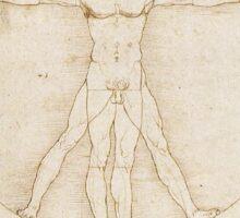 Leonardo Da Vinci - Homo Vitruviensis Sticker