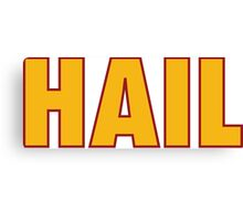 HAIL HTTR Redskins DC by AiReal Apparel Canvas Print
