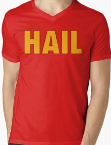 HAIL HTTR Redskins DC by AiReal Apparel Mens V-Neck T-Shirt