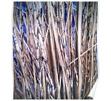 Grass Studies, Segments Poster