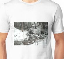 Winter Stream Unisex T-Shirt