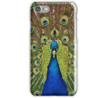 Colorful male peacock iPhone Case/Skin