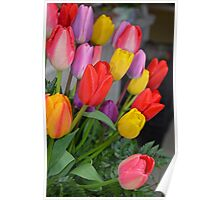 Colorful tulip floral arrangement Poster