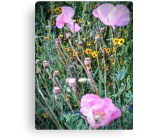 Front Yard Meadow 2014 Canvas Print