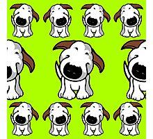 Bull Terrier Repeat Photographic Print