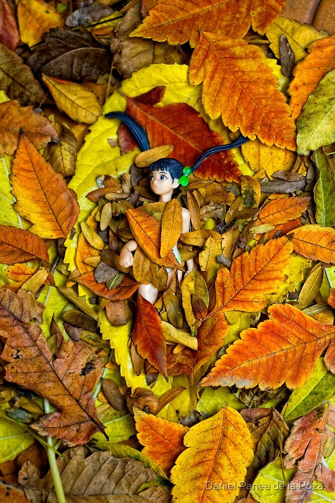 Autumn Anime  by Daniel Panea de la Poza