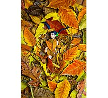 Autumn Anime  Photographic Print