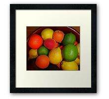 Christmas Fruit 2015 Framed Print