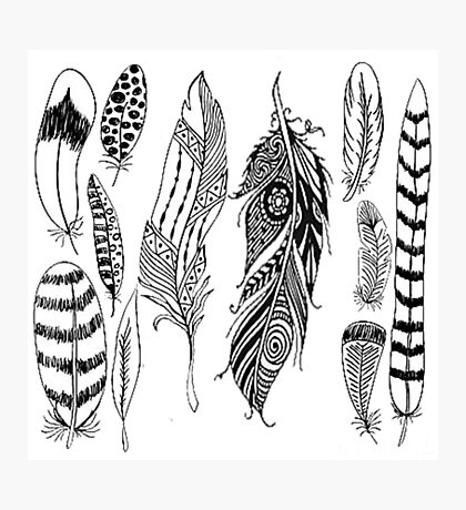 Indian Feathers Photographic Print
