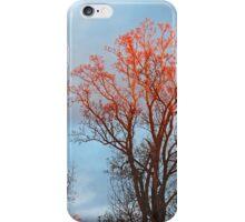 Kiss of the Sun iPhone Case/Skin