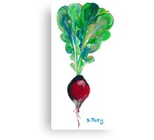 Ode to the Vegetable: Radish Canvas Print
