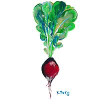 Ode to the Vegetable: Radish Photographic Print
