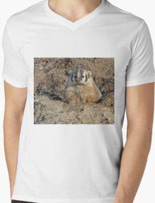 Brown Noser Badger Mens V-Neck T-Shirt