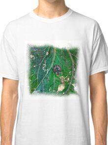 The Atlas Of Dreams - Color Plate 41 Classic T-Shirt