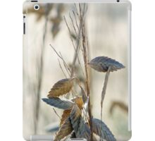 Beachy Keen iPad Case/Skin