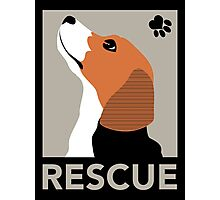 Rescue (Beagle) Photographic Print