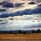 Clouds Rolling In by Vicki Field