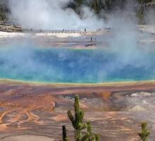 Grand Prismatic Springs Sticker