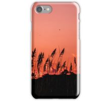Dragonflies Over Dune Grass iPhone Case/Skin