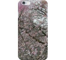 UnWinter iPhone Case/Skin