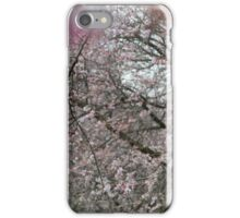 UnWinter iPhone Case/Skin