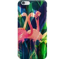 Flamingo Dance iPhone Case/Skin