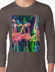 Flamingo Dance Long Sleeve T-Shirt