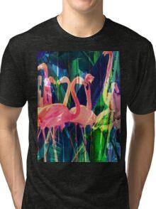 Flamingo Dance Tri-blend T-Shirt