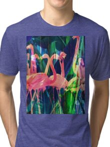 Flamingo Dance Tri-blend T-Shirt
