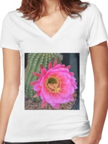 Pink Easter Lily Cactus Women's Fitted V-Neck T-Shirt