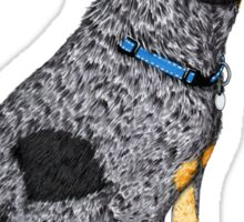 Australian Cattle Dog, Blue Heeler, Birthday Cupcake Sticker