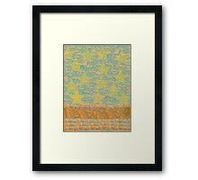 Yellow Star Water Wattle  Framed Print