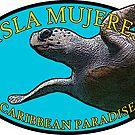 Isla Mujeres - Caribbean Paradise - Turtle by IntWanderer