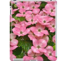 Pink kousa dogwoods iPad Case/Skin