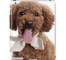 Cute poodle with ribbon iPad Case/Skin