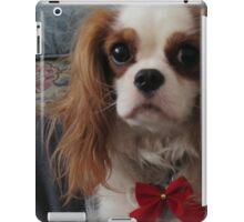 Dog for the Holidays iPad Case/Skin