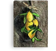 Lemons On The Branch Canvas Print