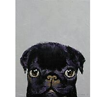 Black Pug Photographic Print