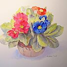 Polyanthus by Beatrice Cloake