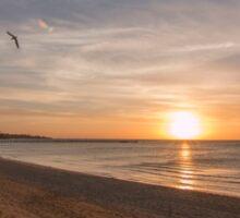 Frankston Beach Sunset  Sticker