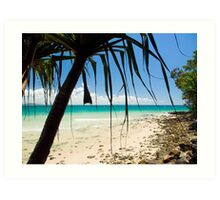 Under The Palm Trees : First Point, Noosa : Sky Blue, Ocean Green & Turquoise  Art Print