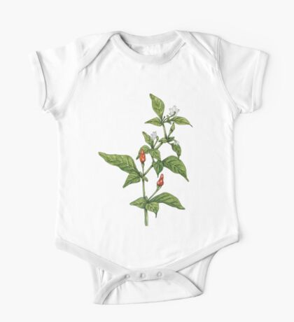 Chilly plant (Pen, Ink and Watercolour) One Piece - Short Sleeve