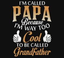 Funny Papa Tshirt by teefighter
