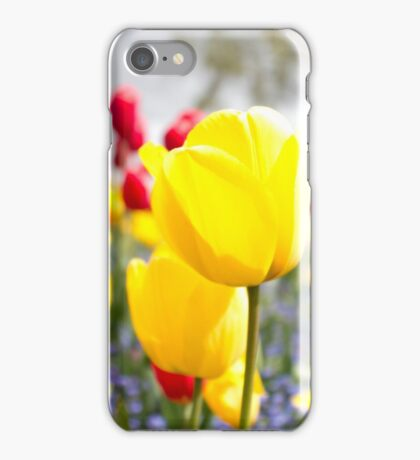 springtime in bloom iPhone Case/Skin