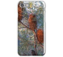 Old Banksia Charm iPhone Case/Skin